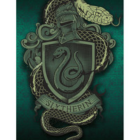 Harry Potter Slytherin Crest Poster