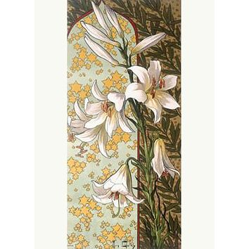 Golay Nouveau Casa Blanca Lily by Mary Golay Fine Art Print