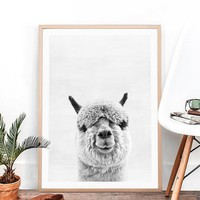 Animal Alpaca Art Print and Poster , Alpaca Photography Canvas Painting Picture South American Animal Wall Art Decor