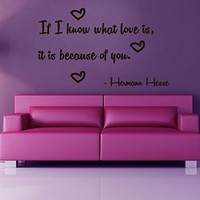 Wall Decor Vinyl Decal Sticker Words Quote If I Know What Love Is It Is Because of You Kg586