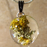 Lichen (Xanthoria sp. and the other) Necklace, nature jewellery, Plant Jewelry, rustic, mycology, fungi