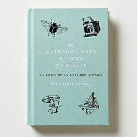 An Extraordinary Theory Of Objects: A Memoir Of An Outsider