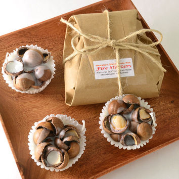 Eco Friendly 3 Fire Starters Large Macadamia - Shipping Included