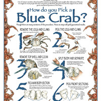 How to Pick a Blue Crab
