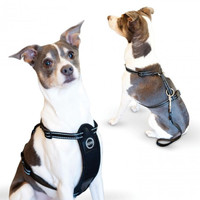 K&H Pet Products Travel Safety Pet Harness