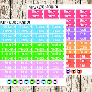 060 || Nursing Student Stickers - Set of 117 Stickers