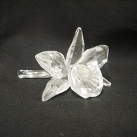 Hawaiian Crystal Orchid