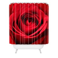 Shannon Clark Red Rose Shower Curtain