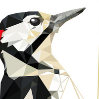 B42 - woodpecker - Geometric - Bird art - black, red