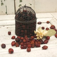 Bird Cage with Scented Rosehips and Refresher Oil