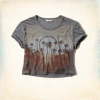 Hollister + Lucy Hale Cropped T-Shirt