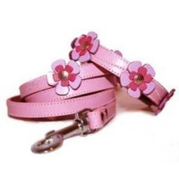 The Cool Puppy Pink Flowers Leather Dog Collar and Leash Set Small (8-10 inches):Amazon:Pet Supplies