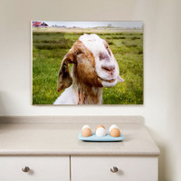 Wrapped Canvas Print The Smiling Goat Wall Art by petekdesign
