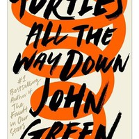 Turtles All The Way Down, Book by John Green (Hardcover) | chapters.indigo.ca