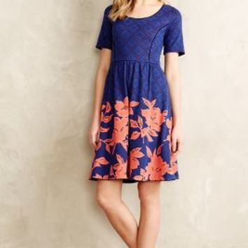 Blushed Blooms Dress