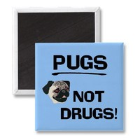 Pugs Not Drugs Magnet from Zazzle.com