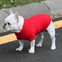 Sweater for frenchies
