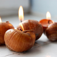 Snails Shell Candle Handmade Eco-friendly Reusable Candle Vanilla Scent