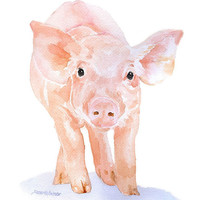 Watercolor Pig Note Cards Set of 6