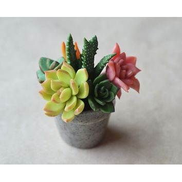 Mini Succulent Arrangement Potted Plant Magnet, Polymer Clay Miniature