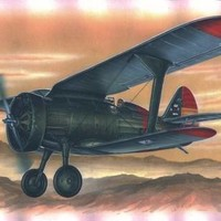 Special Hobby Kit 1/48 Polikarpov I-15 Chato - SH48015 - Used from collection