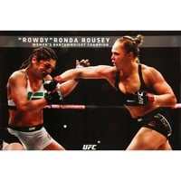 UFC Domestic Poster