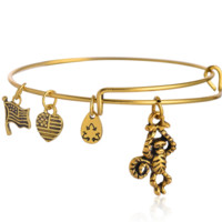 Alex and Ani styleThe lovely monkeys pendant charm bracelet