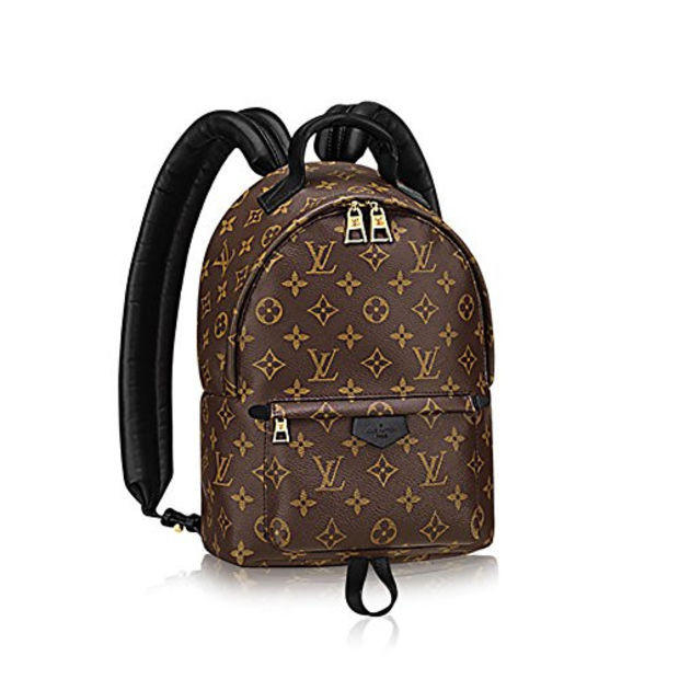 Image of Authentic Louis Vuitton Monogram Canvas Palm Springs Backpack PM Handbag Article: M41560 Made in France