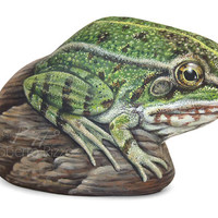 A Rare Shaped Stone Transformed in a Green Frog! An Unrepeatable Piece of Art Totally Hand Painted by Roberto Rizzo