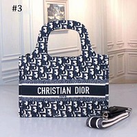 Dior new fashion trend a variety of versatile single shoulder messenger handbag