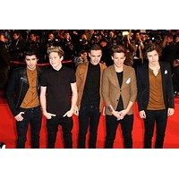"""One Direction Poster 16""""x24"""""""