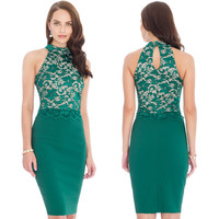 Sexy Sleeveless Lace Patchwork Bodycon Knee-Length Pencil Dress