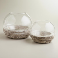 Round Glass and Cement Terrarium - World Market