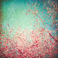 Blue Autumn, Pink leafs on blue, turquoise, green, aqua sky Art Print by AC Photography