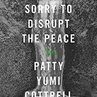 Sorry to Disrupt the Peace: A Novel
