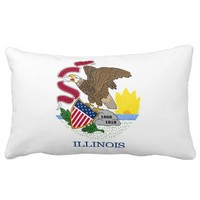 Illinois flag, American state flag Throw Pillow