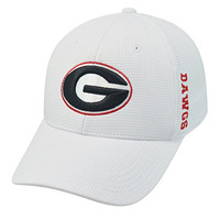 Georgia Bulldogs NCAA Top of the World Booster Plus One Fit Hat White