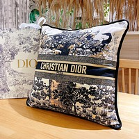 Christian Dior Embroidered Pattern Letter Logo Sofa Pillow Pillow #3
