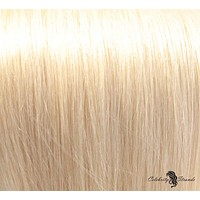 "21"" Clip In Remy Hair Extensions: Monroe Blonde No. 613"