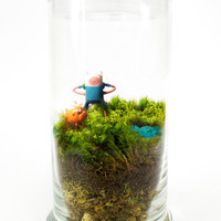 Adventure Time Terrarium - Default Title