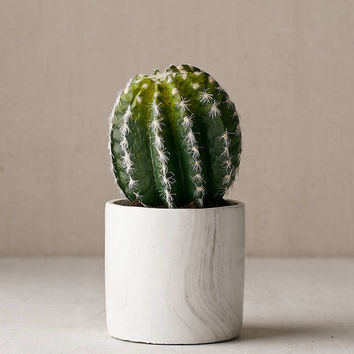 Small Cactus Decor - Urban Outfitters