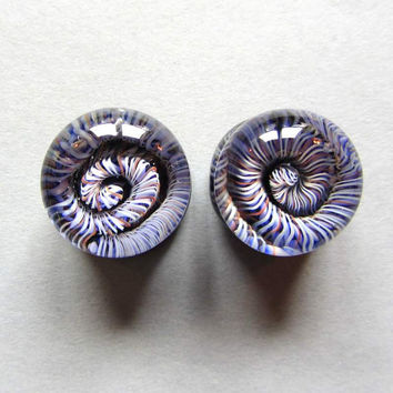 """Ear gauges in glass~ 14mm - 9/16"""" ~  sold as pair ~ gauged spiral landscape ~ body jewely ~ glass gauged plugs for stretched ears"""