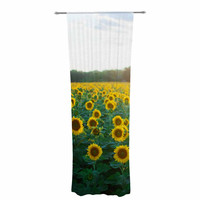 "Chelsea Victoria ""Sunflower Fields"" Floral Photography Decorative Sheer Curtain"
