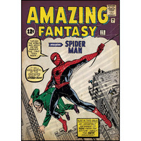 Spiderman Issue #1 Comic Cover Giant Wall Decal