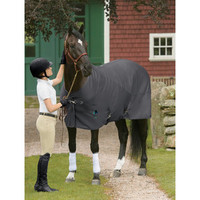 Fenwick Liquid Titanium Sheet | Dover Saddlery