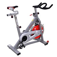 Sunny Health & Fitness Belt Drive Pro Upright Exercise Bike (Grey)