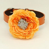 Orange flower dog collar, Orange leather dog collar, Girl collar, Wedding accessory, beaded Crystal dog collar, dog of honor, Handmade