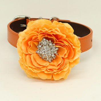 Orange flower dog collar, Orange leather dog collar, Girl collar, Wedding accessory, beaded Crystal dog collar, dog of honor, Handmade , Wedding dog collar