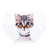 Kitty Briefs
