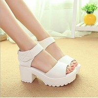 Thick Heel Wedges